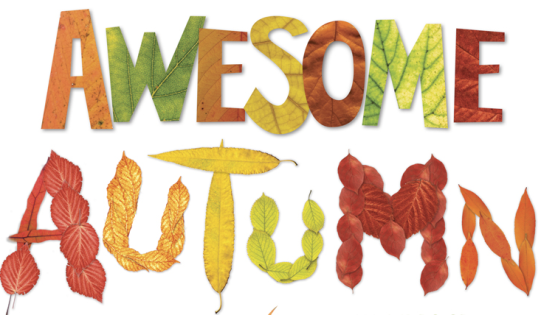 awesome-autumn-pic