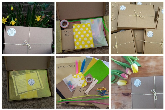 spring box collage