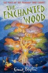 the-enchanted-wood-11